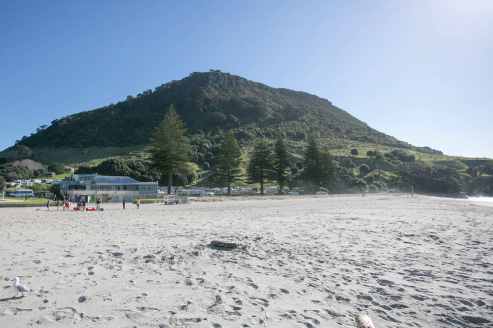 Five Star Mt Maunganui